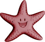 Sea Star Color