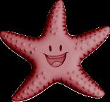 Sea Star Color
